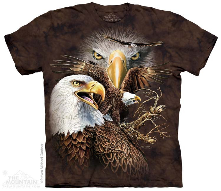 3792 Find 14 Eagles