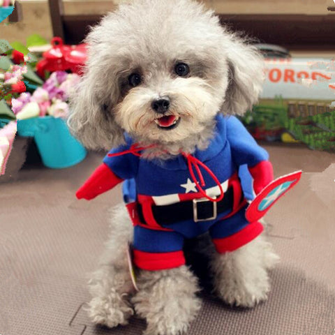 Captain of America Dog/Cat Costume
