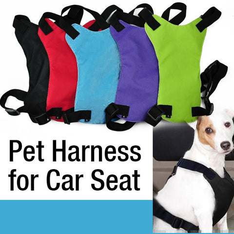 Pet Auto Travel Safety Harness for use with Seat Belt