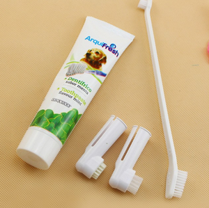 3 pcs Pet Hygiene Teeth Care Toothbrush plus Toothpaste Set