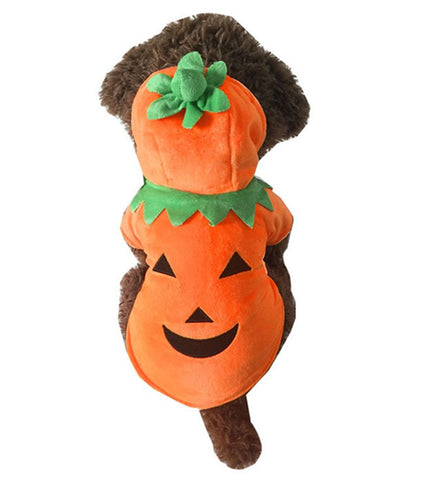 Halloween/Thanksgiving Jack O Lantern Costume Coat