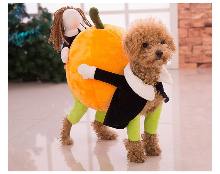Funny Pumpkin Carrier Costume