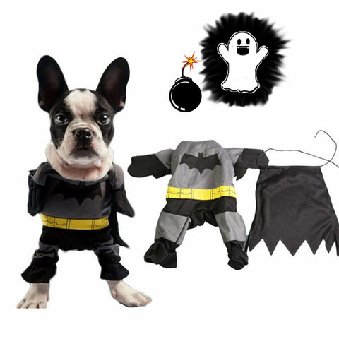 Image of Halloween Bat Crime Fighter Costume