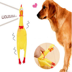 Yellow Mini Screaming Rubber Chicken Pet Toy