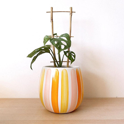PRE-ORDER - Arizona Desk Planter