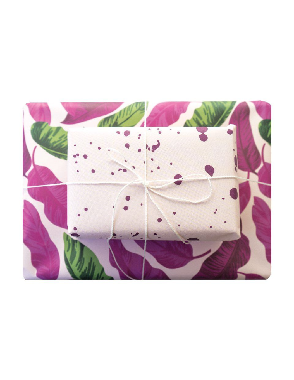 Double Sided Wrapping Paper 3PK: Tropical Paint | Blushing Confetti