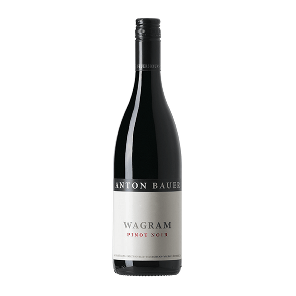 Anton Bauer Wagram Pinot Noir - Grain & Vine | Curated Wines, Rare Bourbon and Tequila Collection