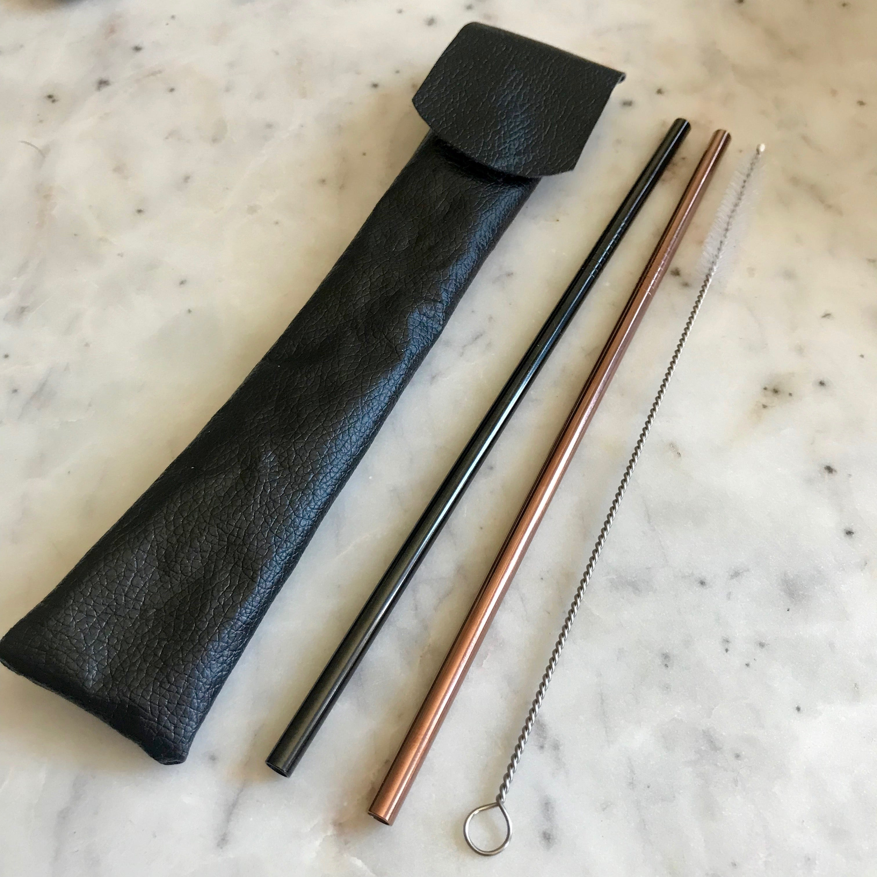 Metal Straws and Carrying Pouch - Long Length