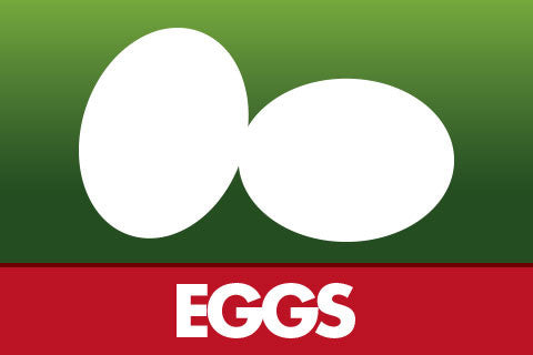 Cage free New Zealand Barn eggs, hormone fee and antibiotics free