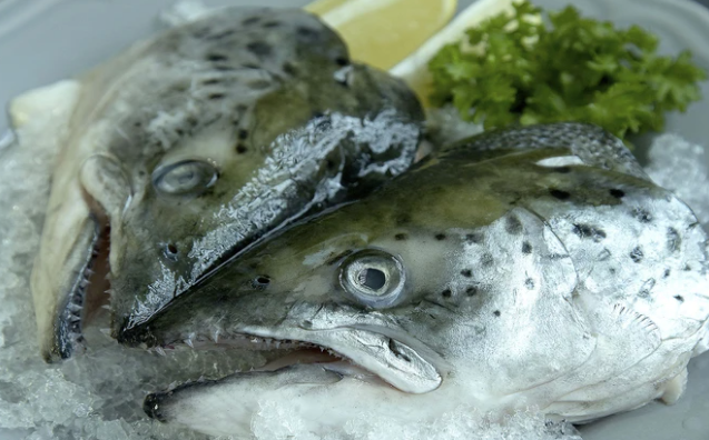Frozen (NZ) King Salmon (Chinook) Heads, 2 Whole Heads split (4 pces)/pack (approx 1300g)