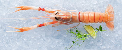 Frozen Whole Scampi (Langoustine), grade 1 size, price per 2kg/box