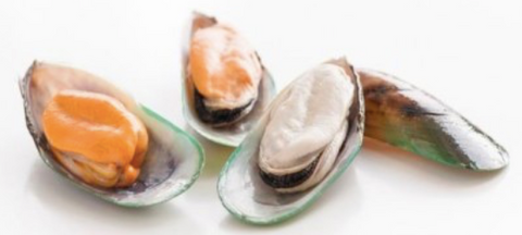 Frozen New Zealand Greenshell Mussels (Half Shell), price per 907g box