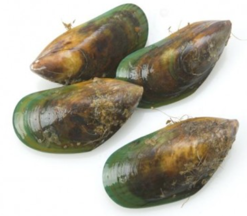 Frozen New Zealand Greenshell Mussels (Half Shell), price per 1kg portion