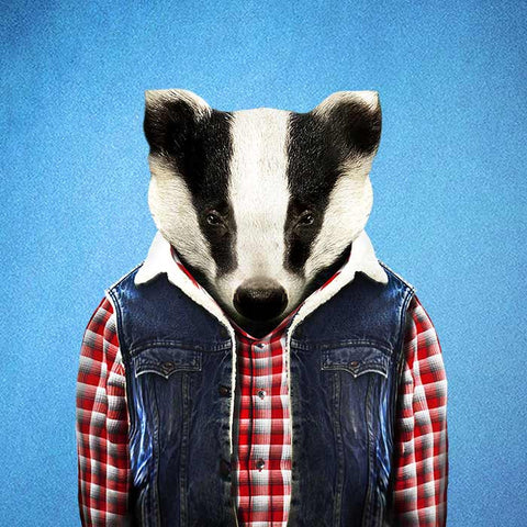 Badger Collection