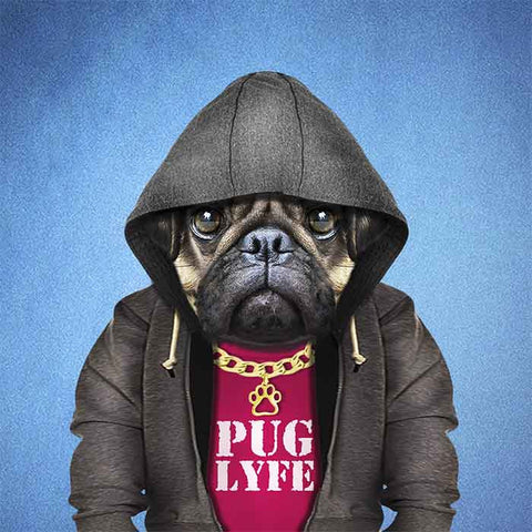 Pug Lyfe Collection