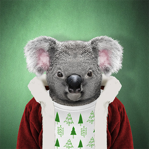 Christmas Koala Collection