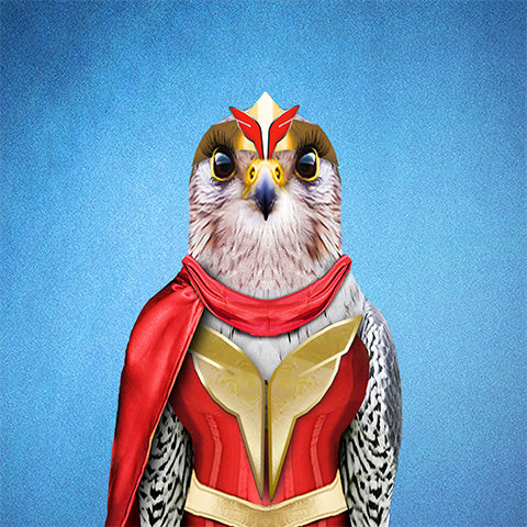 Falcon Wonderful Collection