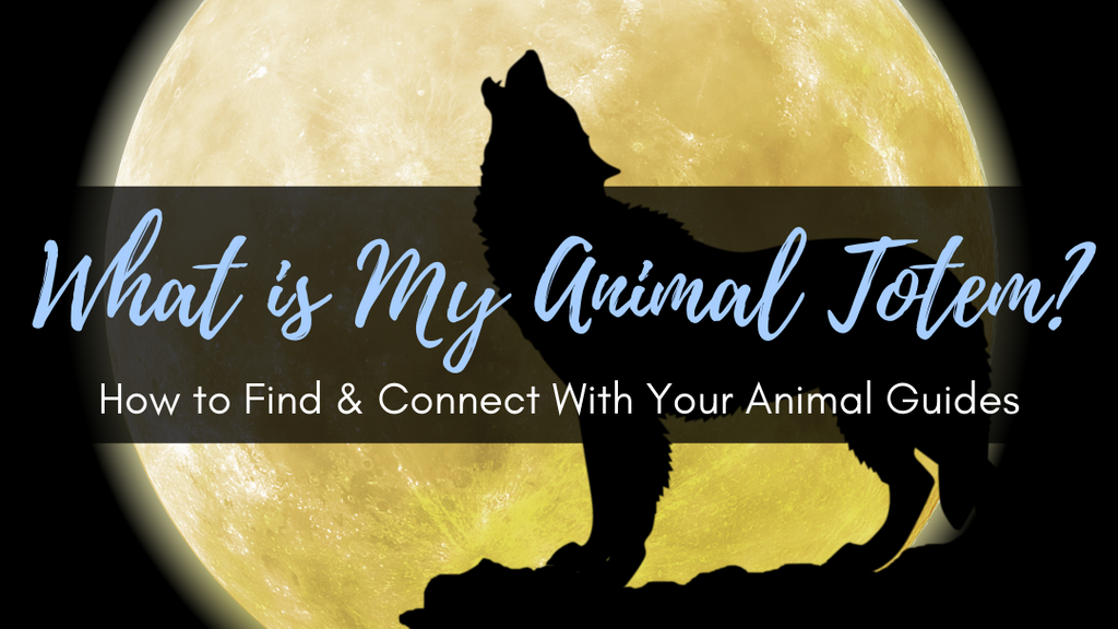What is My Animal Totem? How to Find & Connect With Your Animal Guides