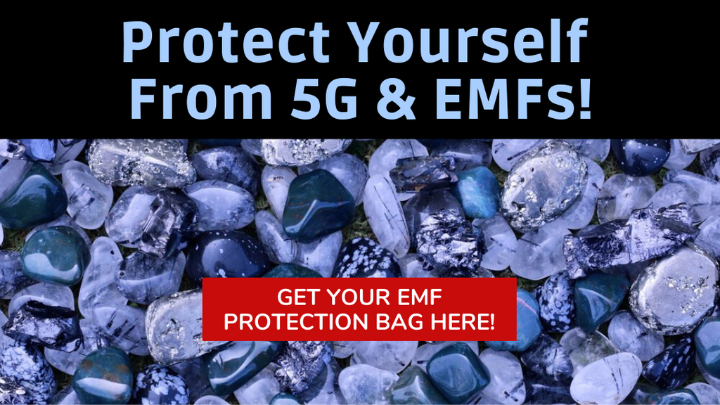 EMF Protection Bag