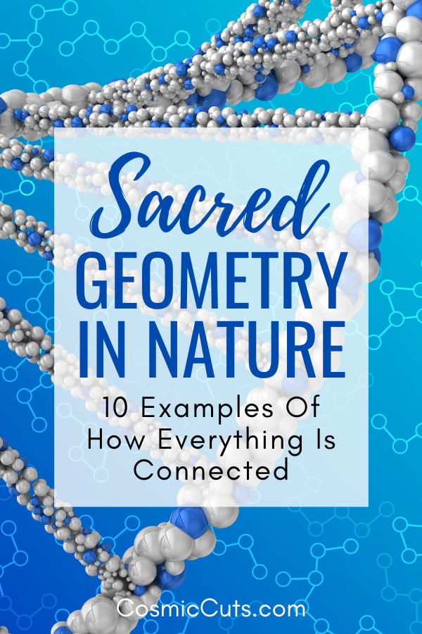 How Sacred Geometry Shows Up in Nature