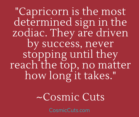 Capricorn Sun Sign and Determination