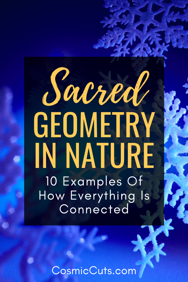 Sacred Geometry in Nature