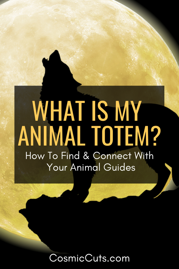 What is My Animal Totem