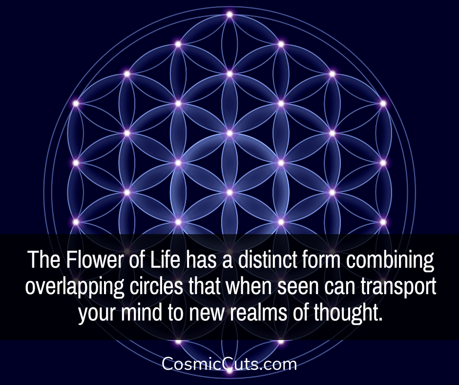 What is the Flower of Life