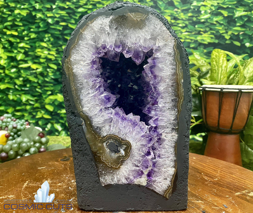 "Brazil Amethyst Geode ""BIG OLE' FLOWER"" 9.00 High Quality Cathedral NS-131"