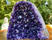 """MIRACLE FLOWER"" Amethyst Geode 6.00 Museum Quality Self Standing Crystal NS-357"
