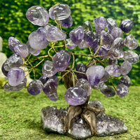 """BOUNTIFUL BONZAI"" Amethyst Geode Gem Trees 9.00 High Quality Brazil T-12"