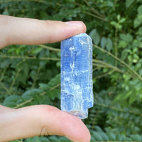 "Kyanite Stone Shard ""DIRECTION FROM ABOVE"" High Quality Healing Crystal"