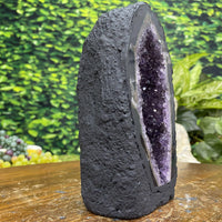 """NO JOKE"" High Quality Amethyst Geode 6.00 THICK Blue Agate Rim NS-269"