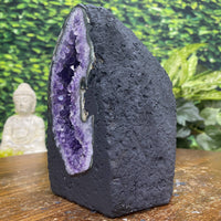 """SLICE OF LIFE"" Amethyst Geode Cathedral 6.00 Cathedral High Quality Flower Formation NS-298"
