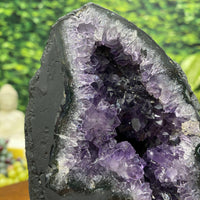 """PURPLE SATISFACTION"" Amethyst Geode High Quality 7.00 Cathedral Brazil NS-326"