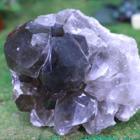 Smoky Quartz Cluster High Quality 8.00 Rainbow Prisms Intact Points QQ-65s