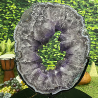 """CIRCLE OF LIFE"" Amethyst Geode Slice 16.00 High Quality Brazil Crystal NS-395"