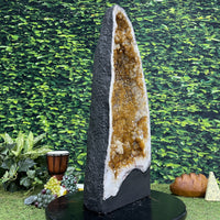 """GOLDEN SCEPTER OF SUCCESS"" Tall Citrine Geode 27.00 High Quality Cathedral NS-388"