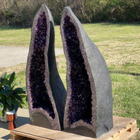 "Amethyst Geode ""El Taco Deliciouso"" 5.50 Self Standing High Quality Crystal LL-69s"