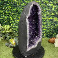 """FENG SHUI FULFILLMENT"" Deep Amethyst Geode 24.00 Huge Cathedral High Quality NS-513"