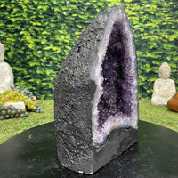 """PORTAL OF PLEASURE"" High Quality Amethyst Geode 11.00 Brazil Cathedral NS-588"