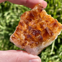 """HOT POTATOES"" Citrine Geode Healing Grade Spectacularly High Quality Fiery Beauts"