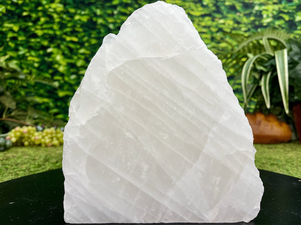 """MISTY MOUNTAIN HOP"" Clear Quartz Specimen 8.00 High Quality Self Standing NS-703"