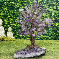 """SWEET SYCAMORE OF SUCCESS"" Amethyst Geode Gem Trees 12.00 High Quality Brazil T-24"