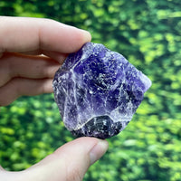 """EARLY BIRD EINSTEIN"" Rainbow Fluorite High Quality Rough Specimen"