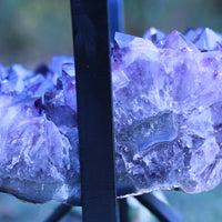 Amethyst Geode Table High Quality Huge Terminations 22.00 Iron Stand Custom Glass GG-21s