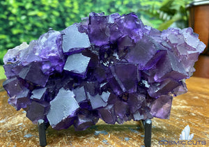 "Purple Fluorite w Stand ""HEALING CUBES"" 5.50 Illinois MUSEUM QUALITY NS-165"