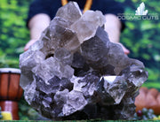 Huge High Quality Smoky Quartz 11.25 Crystal Cluster QQ-59s