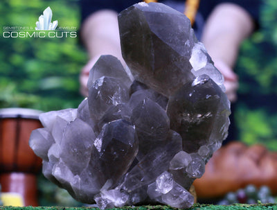 Rutilated Smoky Quartz Specimen 10.75 Huge High Quality Crystal QQ-105s