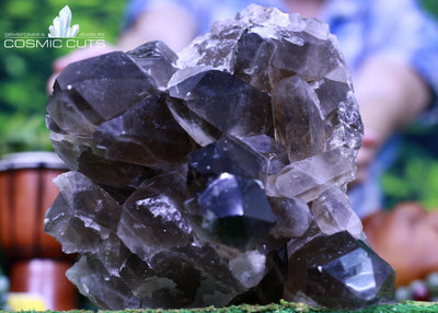 Huge Dark Smoky Quartz Specimen 8.50 High Quality QQ-69s